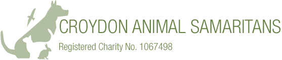 Croydon Animal Samaritans | Cat Dog Rescue & Rehoming
